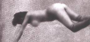 Frontbild der Austellung Lynch - Dark Splendor