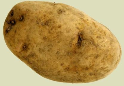 Eine Karoffel